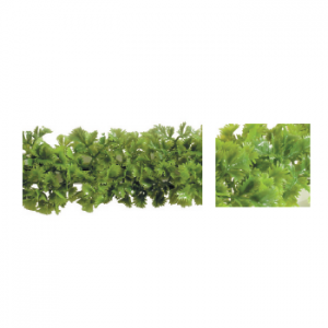 Garnish Black Base Luxury Parsley Per Pack 6