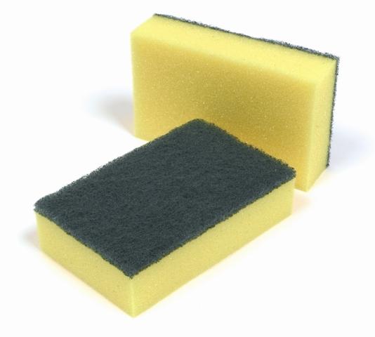 Sponge Backed Scourers pack 10